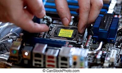 컴퓨터, 서비스, -, 세트, cpu