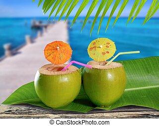 코코넛, 짚, 칵테일, 에서, 열대적인, 카리브해, 교각