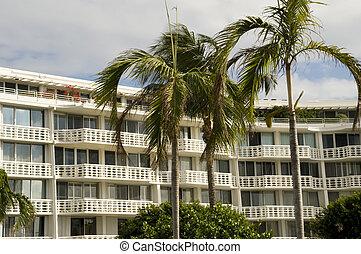 콘도, 또는, 호텔, 에서, 서쪽 종려 바닷가