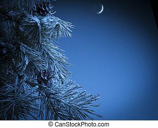 크리스마스, 밤