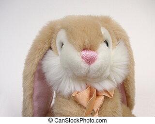 토끼, 장난감