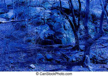 파랑, 공상, 황혼, 숲