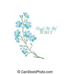 파랑, 나, 잊다, 벡터, 나트, 꽃