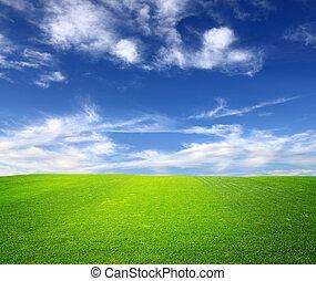 파랑, 들판, 녹색의 하늘