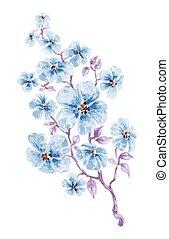 파랑, 수채화 물감, 꽃, 가지