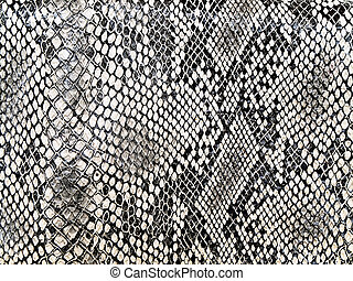 패턴, 뱀