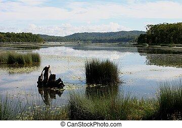 평화로운, 호수