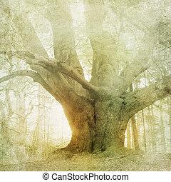 포도 수확, 조경술을 써서 녹화하다, 숲, 배경