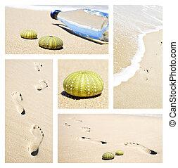 포탄, 콜라주, 발자국, 장난꾸러기, 장소, 바다, 바닷가