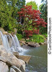 폭포, 와..., 연못, 에서, 뒤뜰, 정원