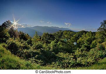 푸른 산, 이랑, 여름, 무대의, 국립 공원, 일몰, 공원도로