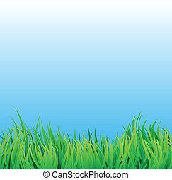풀밭, 와, 푸른 하늘