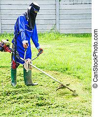 풀을 깎는 것, 잔디 깎는 사람, 남자, 잔디, 노동자