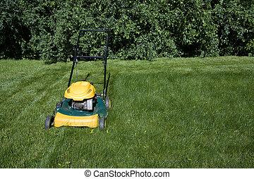 풀, 공간, lawnmower, 정상, 깎는 것, 사본, 보이는 상태