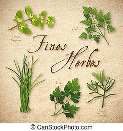 풀, 벌금, 혼합, 프랑스어, herbes