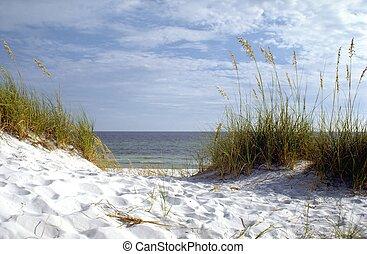 플로리다, 바닷가