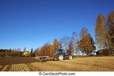 핀란드 말, 농업