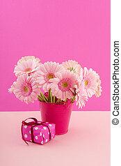 핑크, 생일