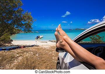 핑크, 손가락으로 튀김 툭 떨어뜨림, 에서, 그만큼, 창문, 의, 차, 통하고 있는, 열대 바닷가