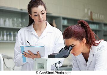 학생, 로 보는, a, 현미경, 동안, 그녀, 동급생, 은 이다, 주를 가지고 가는, 에서, a, 실험실