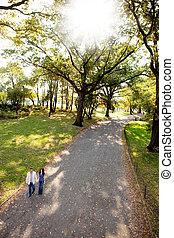 한 쌍, 공원, 걷다