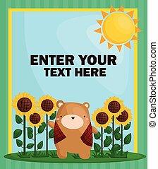 해바라기, 곰, 카드