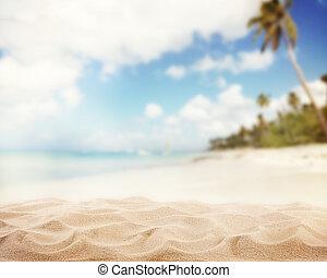 해변의 모래 사장