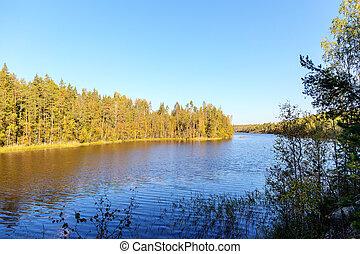 해안, 의, a, 숲, 호수