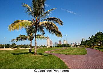 현대, 공원, 에서, dubai, 도시, uae