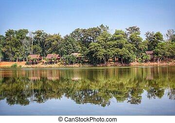 호수, 와..., 숲