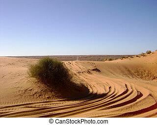 호주, 사막 장소