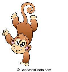 혼자서 젓는 길쭉한 보트, 원숭이, 귀여운