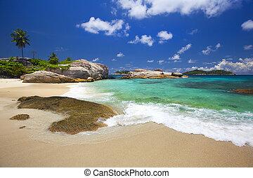 -, 島, 浜, 夢, felicit?