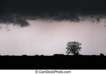 -, 嵐, 風景, 稲光