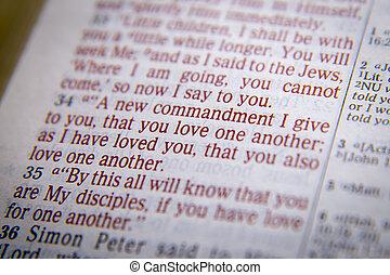 -, 愛, テキスト, 聖書, もう1(つ・人), 1(人・つ)