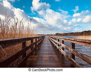 -, 木製である, 突堤, 木, 水辺, 長い間, まっすぐに, 桟橋, 通り道