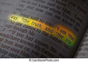 -, 真実, 方法, 生活, 聖書, テキスト