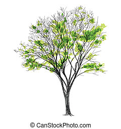 -, 葉, 木, 手, 大きい, なしで, 裸, 引かれる