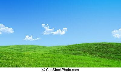 -, 녹색 풀밭, 수집, 자연