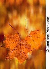 -, achtergrond, herfst