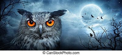 -, aigle, fâché, spooky, scène, clair lune, hibou, forêt, ...