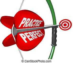 -, apuntado, perfecto, ojo, marcas, toros, arco, práctica, flecha
