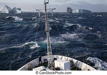 -, arctisch, groenland, scoresbysund, scheeps