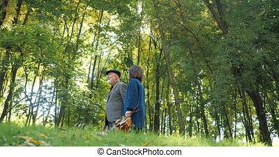 -, automne, beau, personnes agées, promenades, lent, motion., arbres, heureux, parc, couple