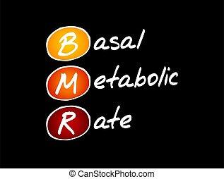 -, basal, tasa, siglas, concepto, metabolic, bmr