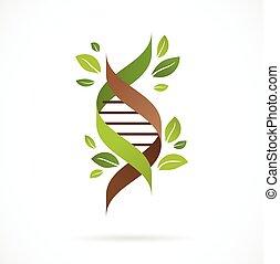 -, blätter, baum, genetisch, grün, dns, ikone