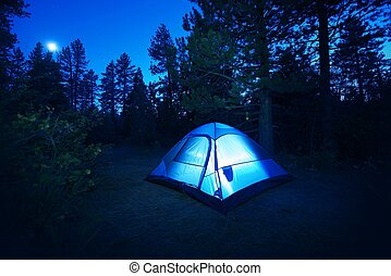 -, bosque, acampar tienda