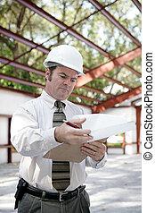 -, bouwsector, inspecteur, het herzien, opmerkingen