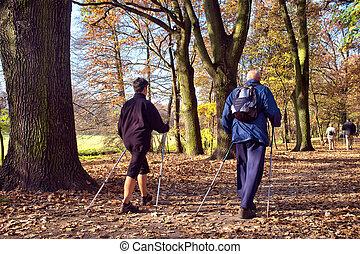 -, camminare, parco, nordico, persone