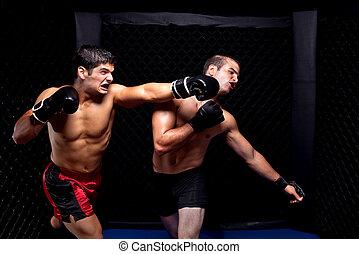 -, combat, artistes martiaux, mélangé, frapper